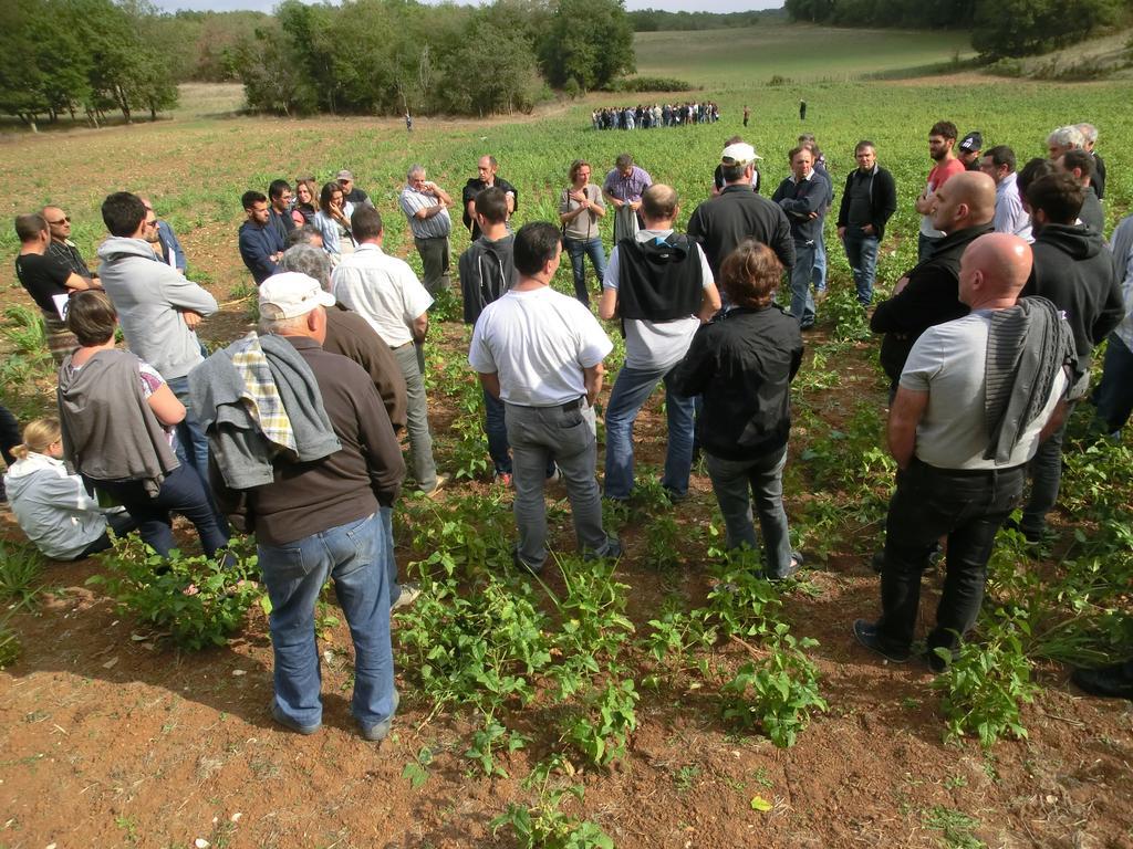 Les lus chambre d 39 agriculture de la loire - Chambre d agriculture recrutement ...